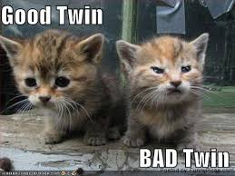 twin3