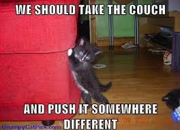 couch move