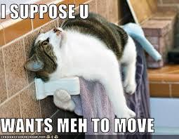 move4
