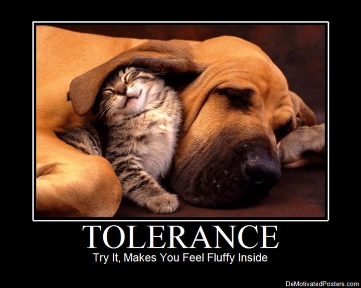 tolerance_20101201200809_reg