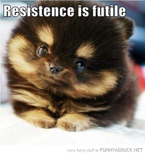 resistance-futile