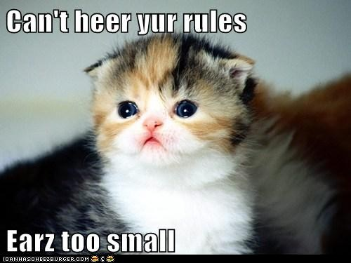 funny-pictures-cant-heer-yur-rules-earz-too-small
