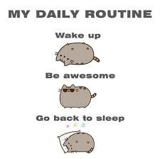 routine1