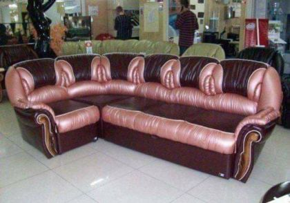 vagina couch