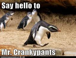 crankypants
