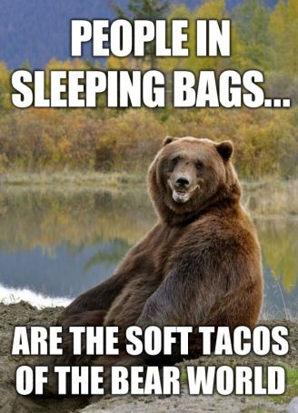 RV-Jokes-Bears-soft-tacos