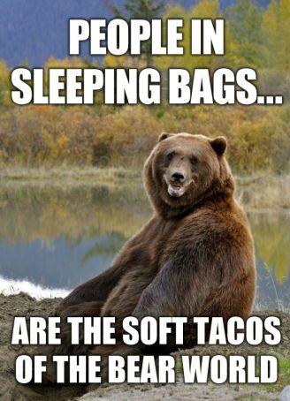 RV-Jokes-Bears-soft-tacos