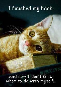 book hangover2