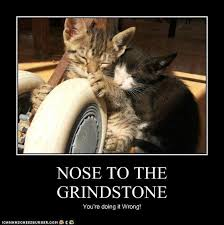 nose to grindstone