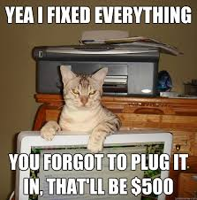 cat plug