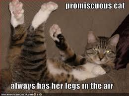 promisc4