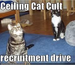 cult1
